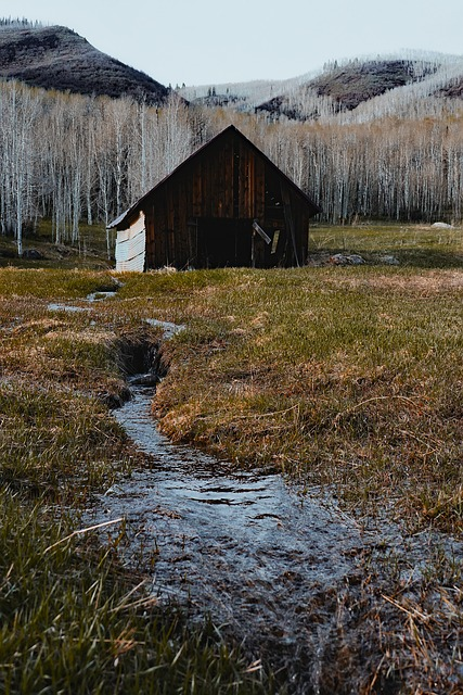 Colorado, Barn, Wooden, Farm, Rustic, Mountains