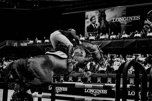 Show, Jumping, Horse, Sport, Basel, Csi