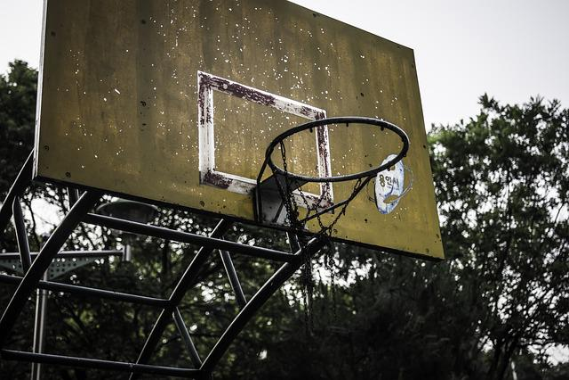 Basketball Great, Goal, Basketball, Vintage, Sport