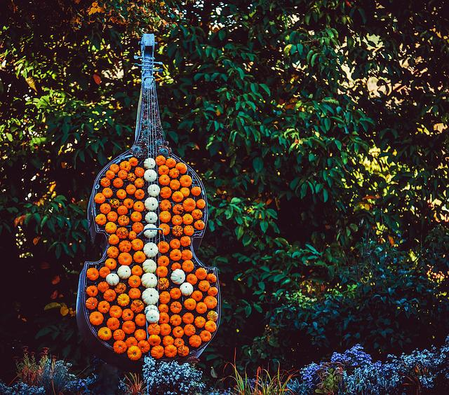 Violin, Bass, Music, Entertainment, Instrument