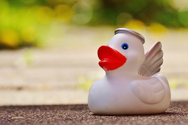 Rubber Duck, Bath Duck, Angel, Halo, Wing