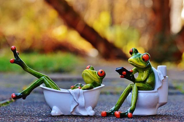 Free photo Funny Bathroom Frogs Bath Session Cute Loo - Max Pixel
