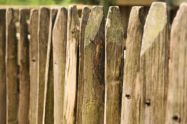 Fence, Wood, Battens, Wood Fence, Paling, Pile