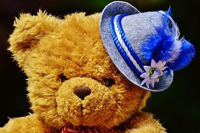 Oktoberfest, Teddy, Hat, Bavaria, Costume, Tradition