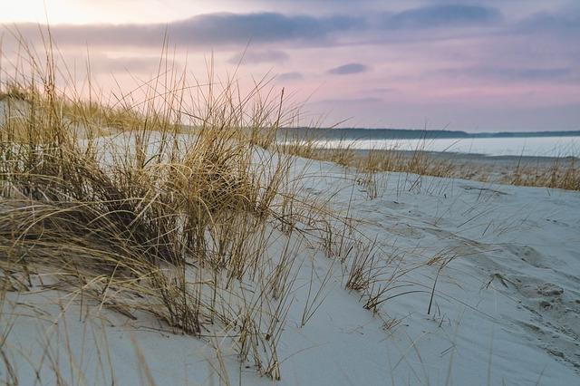 Baltic Sea, Dune Grass, Beach, Sea, Coast, Sand, Sky