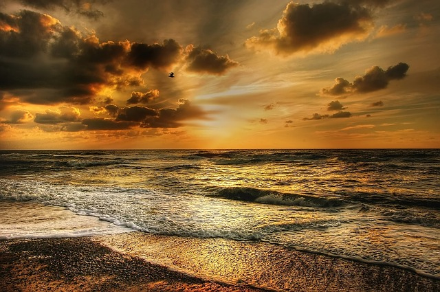 Denmark, North Sea, Beach, Coast, Dramatic Sky, Evening