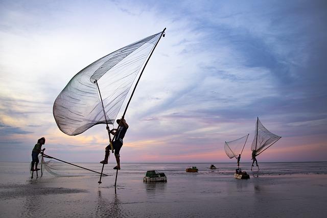Sea, Fishing, Man, Sunrise, Ocean, Sunset, Beach, Water