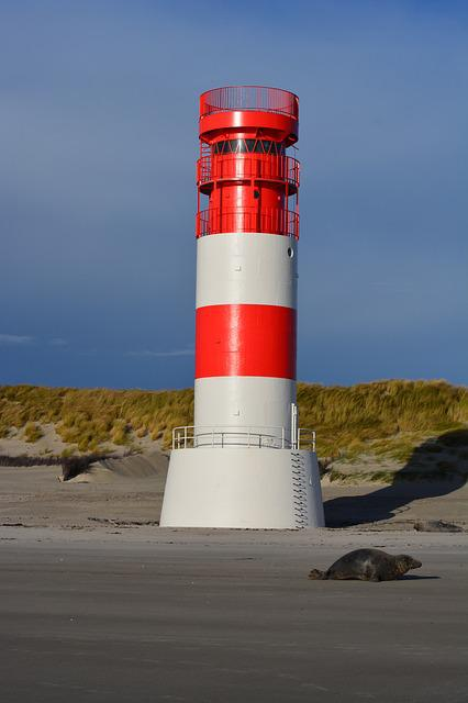 Lighthouse, Seal, Beach, Helgoland, Dune, Nature