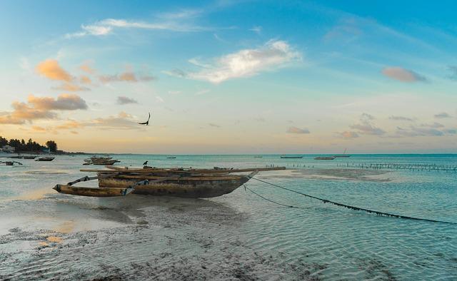 Africa, Zanzibar, Beach, Tanzania, Island, Exotic