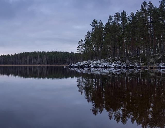 Landscape, Lake, Finnish, Beach, Water, Nature