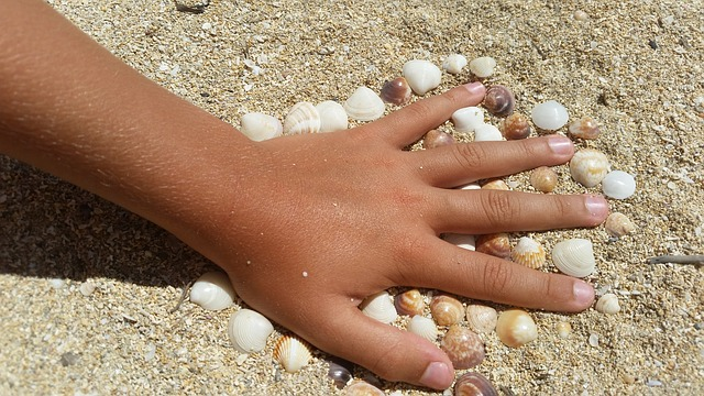 Hand, Child, Mussels, Beach, Sand