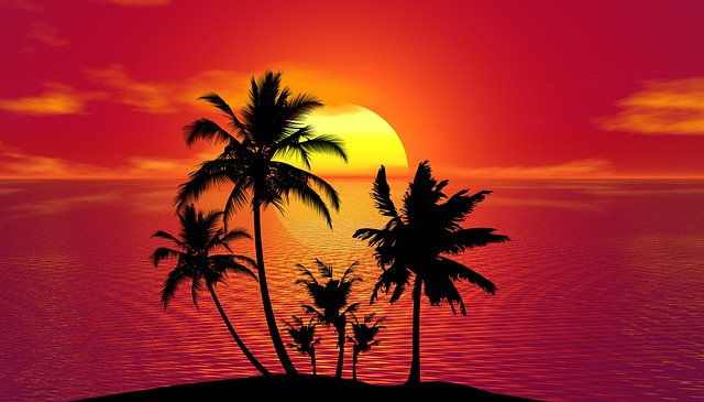 Tropical, Summer, Sunset, Beach, Palm Trees, Island