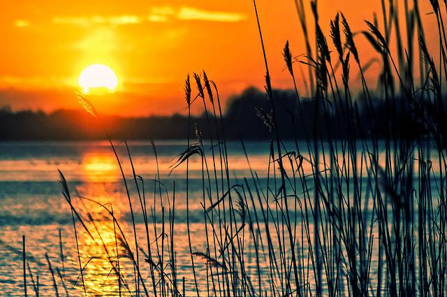 Lake, Reeds, Sunset, Landscape, Nature, Scenery, Beach