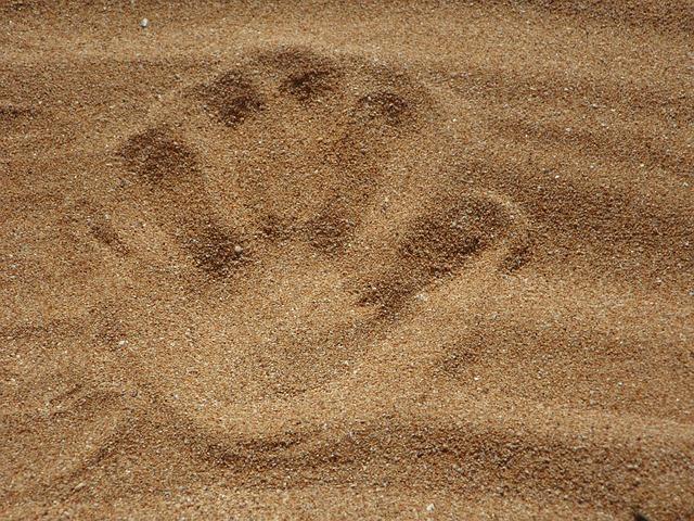 Sand, Beach, Reprint, Hand, Handprint