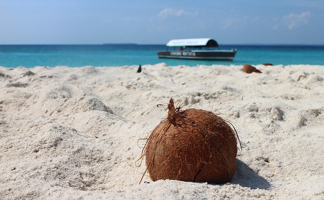 Coconut, Beach, Sand, Sand Beach, Boot, Sea, Caribbean