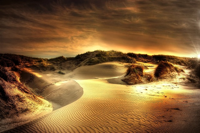 Dunes, Sea, North Sea, Beach, Sand, Denmark, Summer