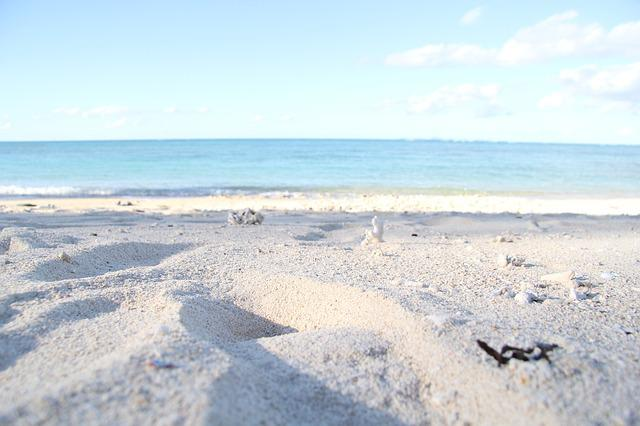 Beach, Sandy, Okinawa, Northern, Sea, Comfort