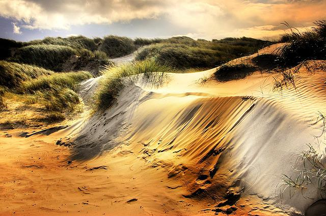 Dunes, North Sea, Beach, Denmark, Sea, Away