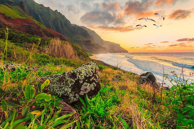 Seascape, Seagulls, Landscape, Sea, Water, Ocean, Beach