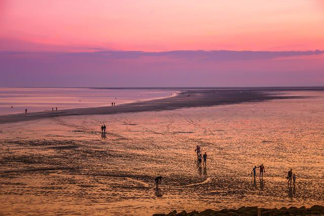 Mudflat Hiking, Watts, Beach, Wadden Sea, North Sea