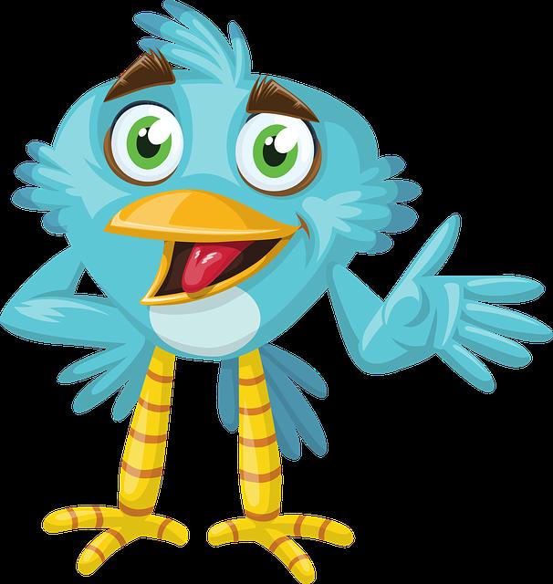 Bird, Animal, Blue, Beak, Wild, Cute, Zoo, Eyes, Pet
