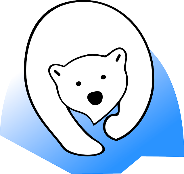 Polar Bear, Ice Bear, Animal, Bear, Mammal, White