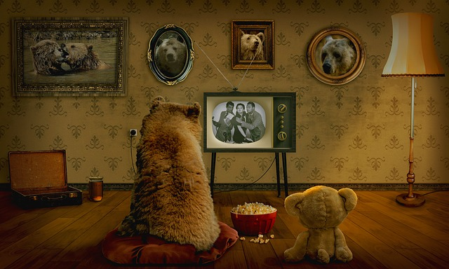 Bear, Teddy, Television, Coziness, Entertainment