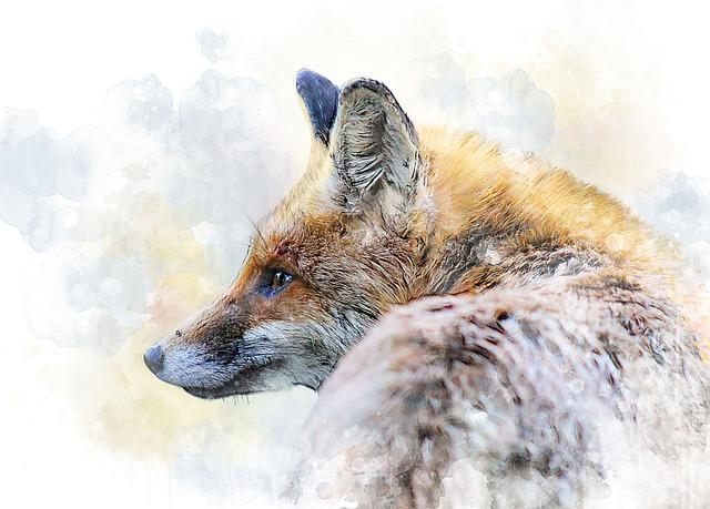 Fox, Beast, Predator, Redhead, Forest Animal