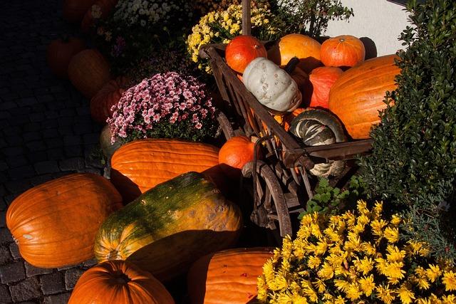 Floral Decorations, Flowers, Ornament, Beautification