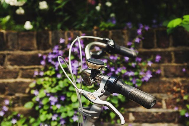 Beautiful, Bell, Bicycle, Bike, Brake Levers, Close-up