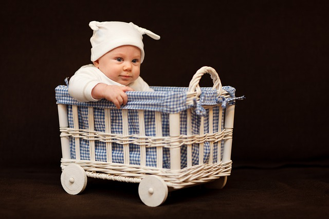 Adorable, Baby, Basket, Beautiful, Boy, Child, Toddler