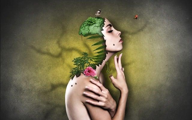 Woman, Environment, Nature, Face, Beautiful