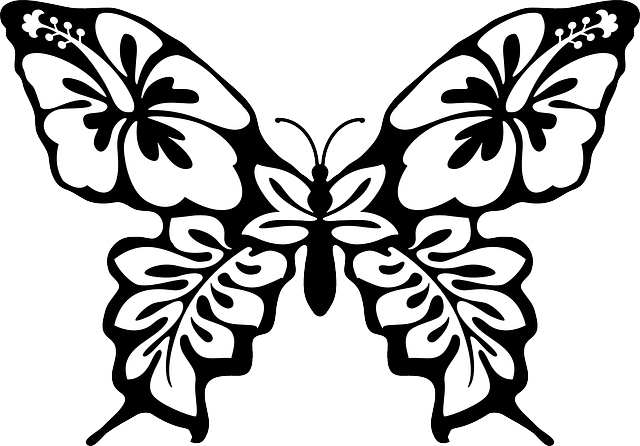 Butterfly, Moth, Insect, Wing, Beautiful, Bug, Pattern
