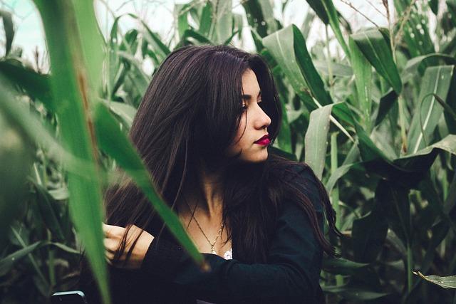 Beautiful, Corn Field, Model, Person, Plants, Portrait