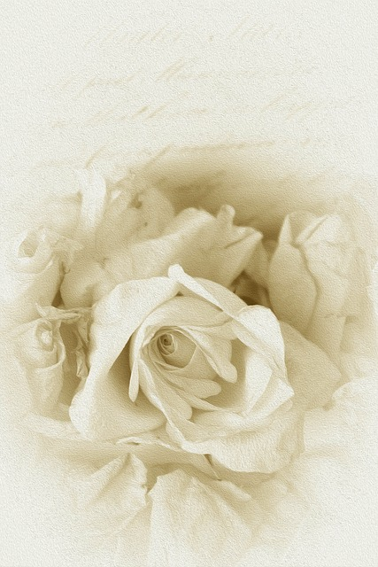 Antique, Rose, Past, Vintage, Nostalgia, Beautiful
