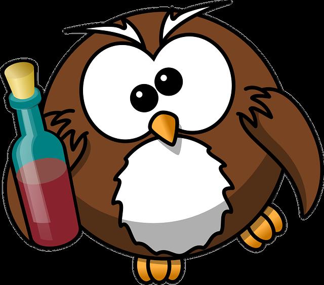 Owl, Drunk, Alcohol, Animal, Beer, Bird, Bottle, Funny