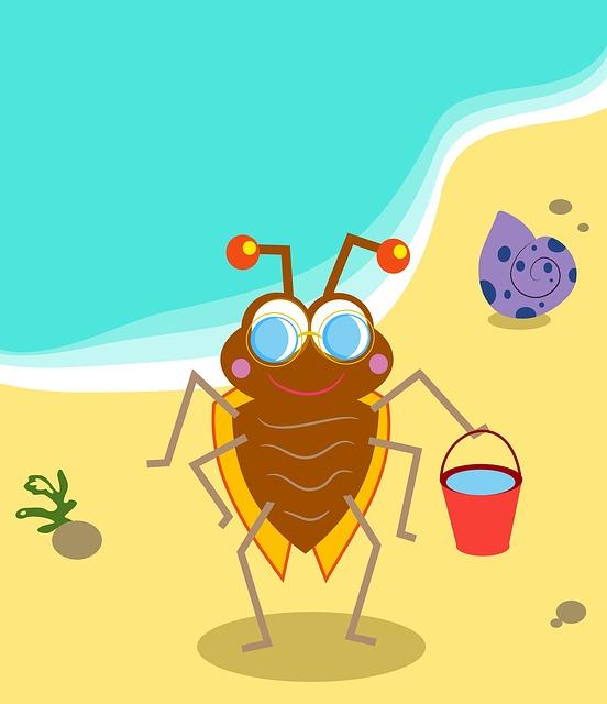 Animal, Nature, Cartoon, Bug, Insect, Beetle, Beach