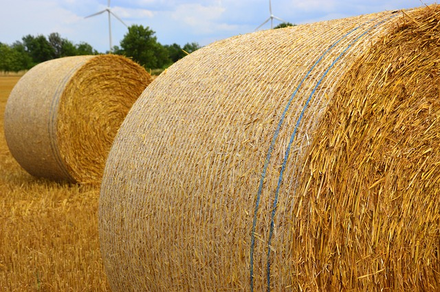 Summer, Beginning Of Summer, Straw, Straw Bales