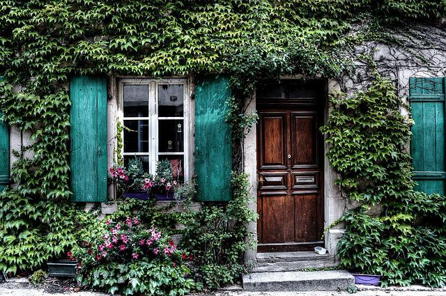Ivy, Facade, House, Belgium, Door, Windows, Shutters