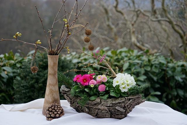 Spring Still Life, Bellis Pink, Primrose White