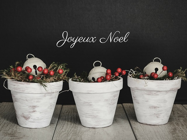 Noel, Holiday, Festive, Text, Words, Greeting, Bells