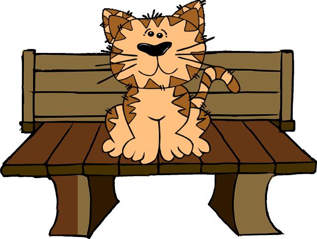 Cat, Bench, Sit, Cute