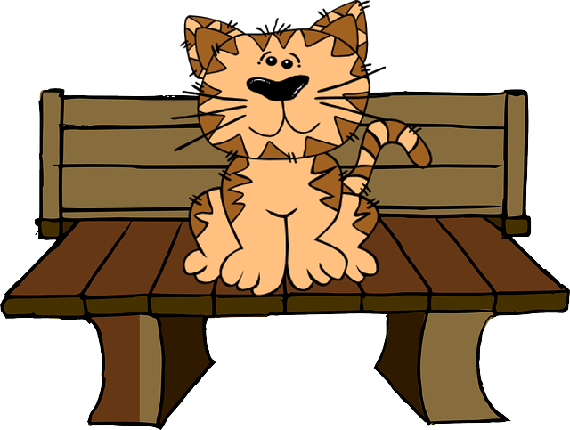 Cat, Bench, Sit, Cute