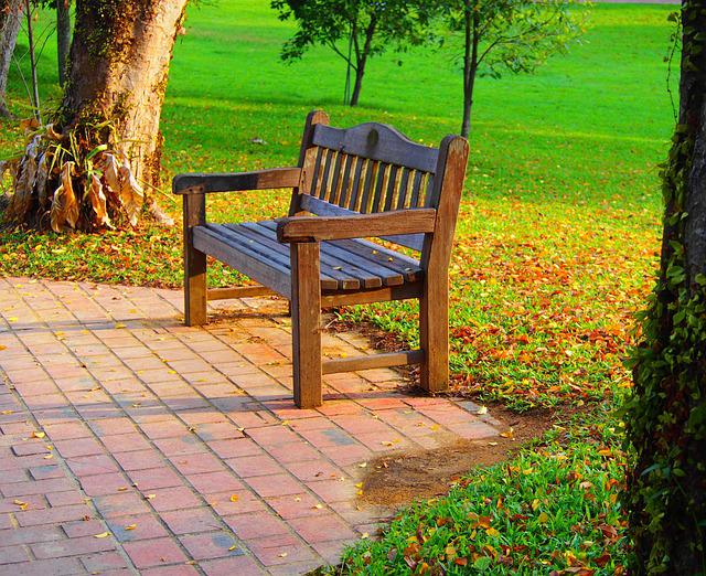 Bench, Seat, Wood, Garden, Chair, Nature, Wooden