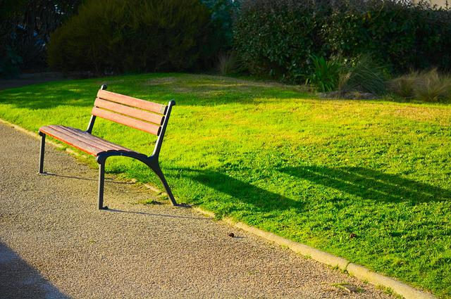 Lawn, Bench, Nature, Summer, No Person, Outdoor, Wood