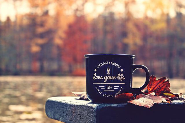 Autumn, Forest, Cup, Waldsee, Bench, Love Your Life