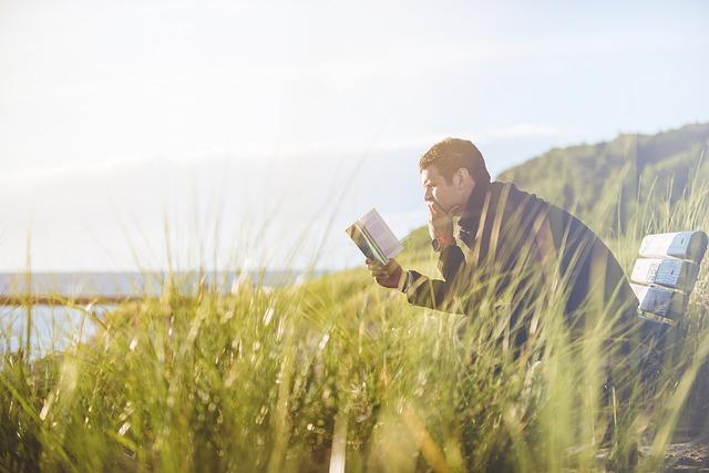 Bench, Grass, Man, Person, Reading, Sky, Solo
