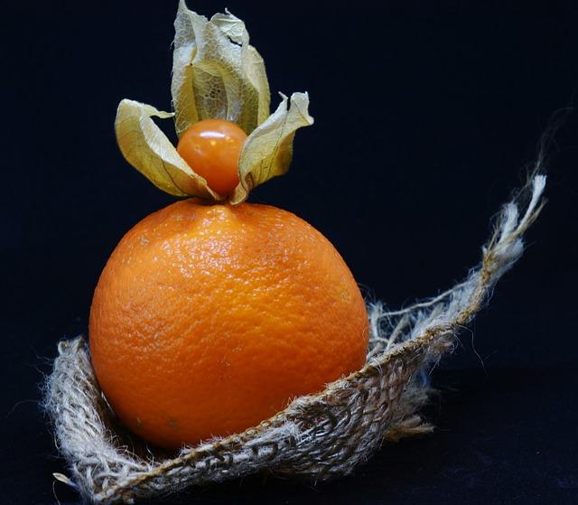 Orange, Physalis, Fruit, Berry, Food, Healthy, Vitamins