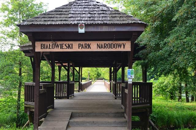 Białowieża, The National Park, Entrance