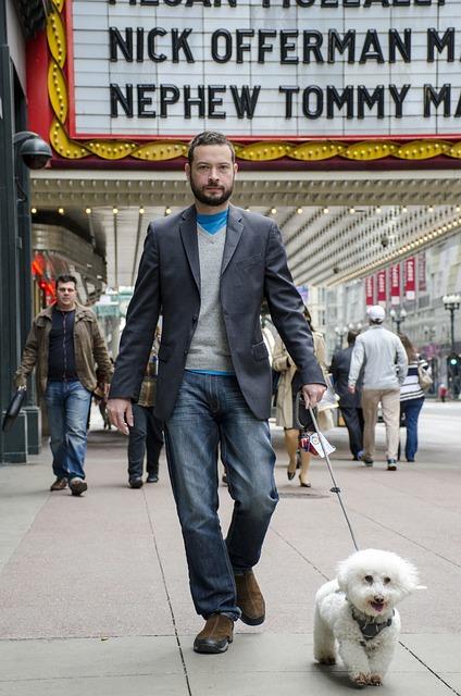 Dog, Theater, Animal, Walk, Man, Street, Bichon Frise